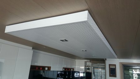 feature ceiling panel