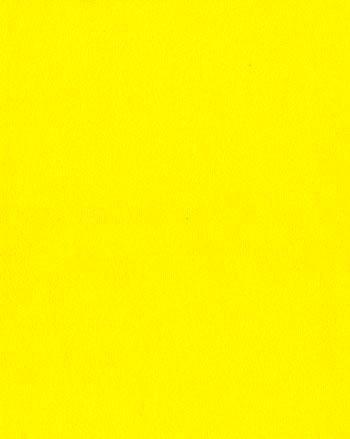 B441 Canary Yellow 5900mm x 200mm x 8mm